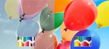 Slika XH95 | Full Array LED | 4K Ultra HD | Visok dinamični razpon (HDR) | Pametni televizor (Android TV)