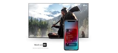 Apple AirPlay in Apple HomeKit
